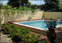 Guesthouse Amice swimming-pool